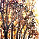 Autumn Begins - Trees by Linda Callaghan