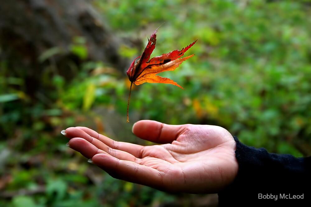 Magic Leaf by Bobby McLeod