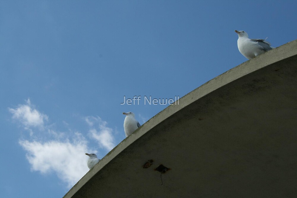 The View From The Top by Jeff Newell