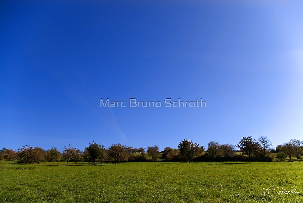 Springtimefeelings in October. by Marc Bruno Schroth