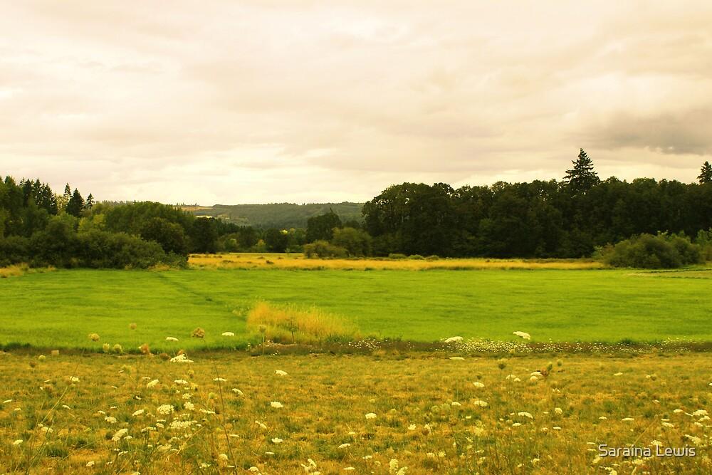 yellow meadows by Saraina Williams