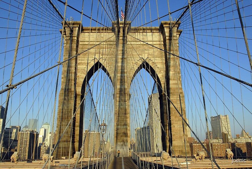 Brooklyn Bridge spider web by joemc