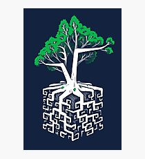 Cube Root Photographic Print