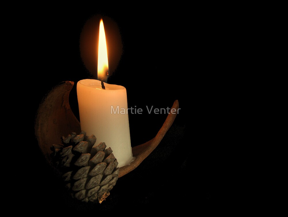 Light in the Darkness by Martie Venter