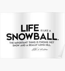 life is like a snowball - warren buffett Poster