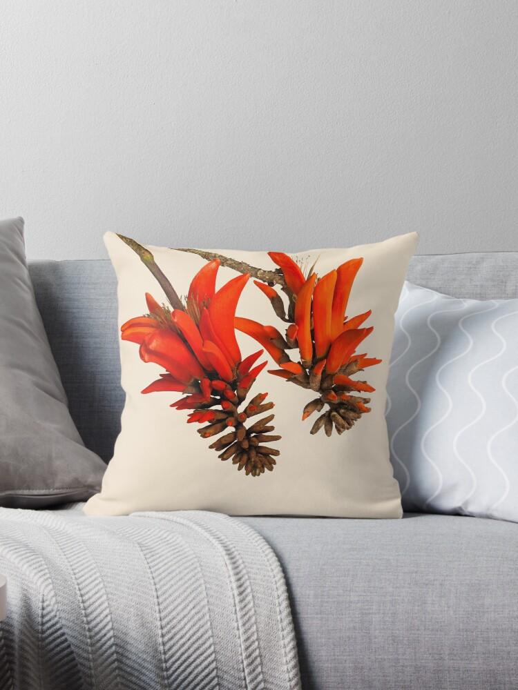 Brilliant Scarlet Coral Tree Flowers by Scotch Macaskill