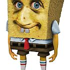 A SPONGE CALLED BOB. by John Medbury (LAZY J)