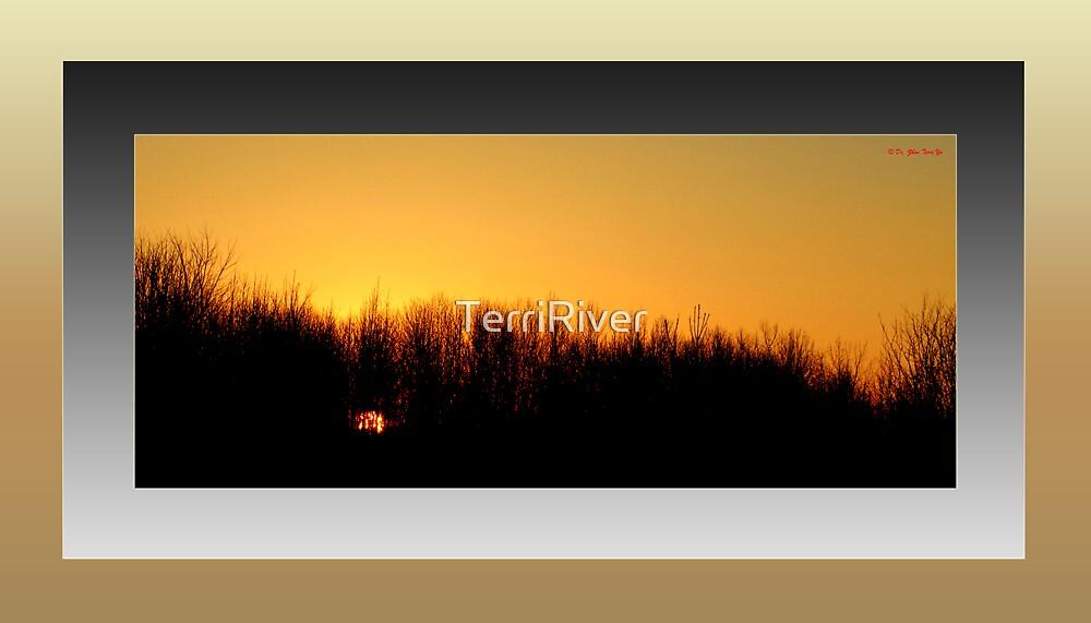 The Last Sunrise of 2007 (framed for wall art/prints) by TerriRiver