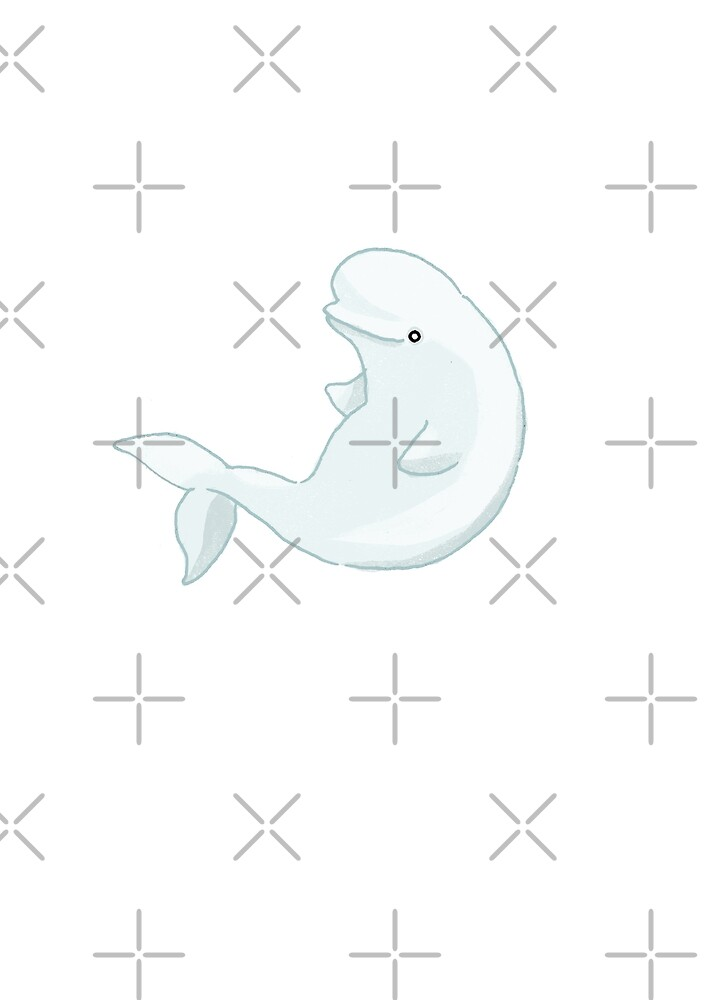Beluga Whale by katherineblower