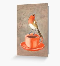 coffee loving robin bird Greeting Card
