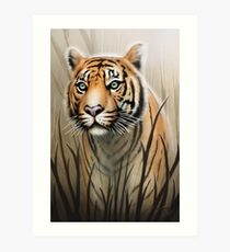 Lámina artística Tigre