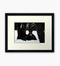 Winter Survival Framed Print