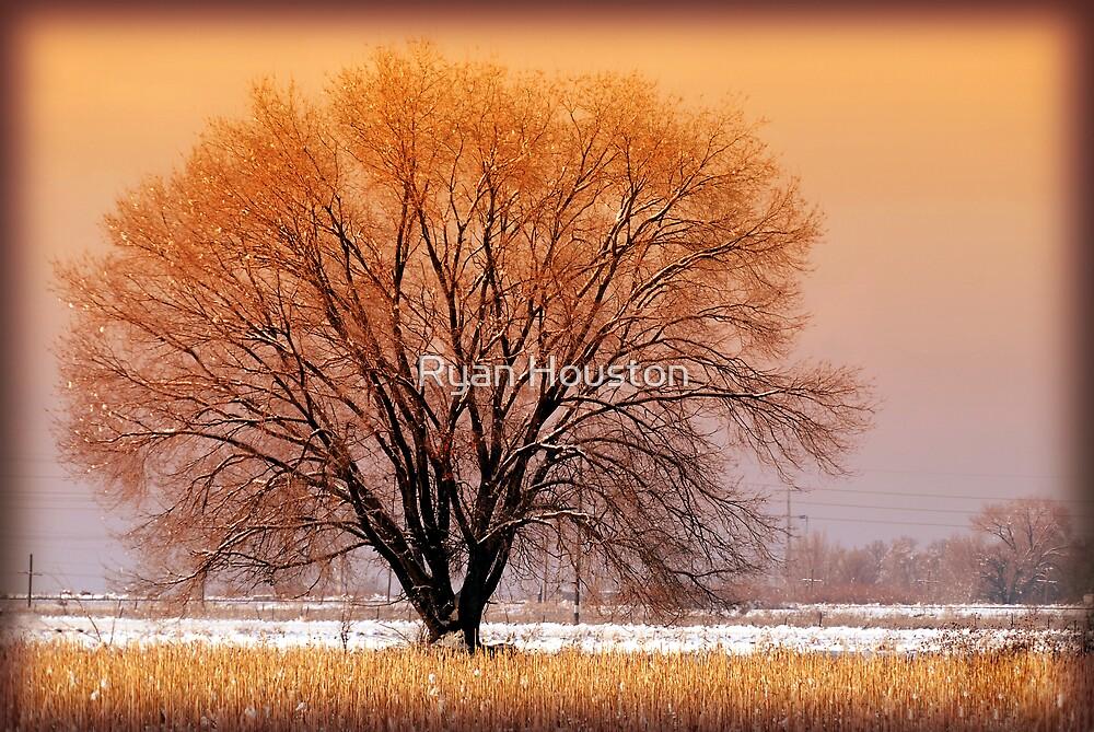 Warm Tones by Ryan Houston