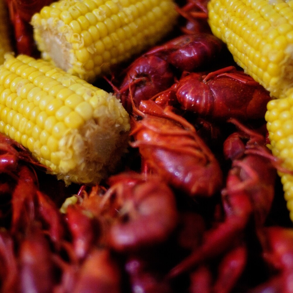 Louisiana Cajun Crawfish Boil with Corn on the Cob by heathendesigns