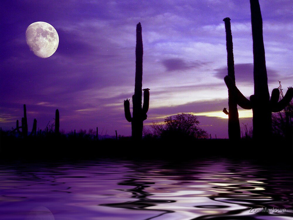 Saguaro Moon by Zoe Marlowe