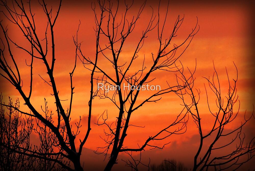 Winter Sunset Silhouette by Ryan Houston