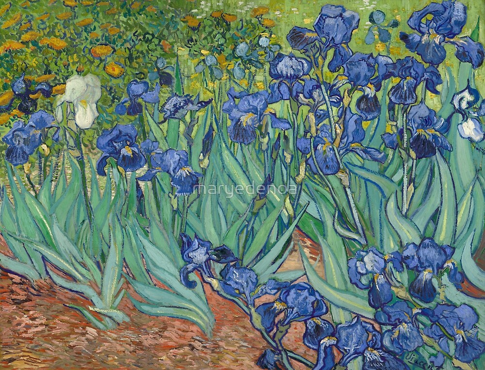 Irises - Vincent Van Gogh by maryedenoa
