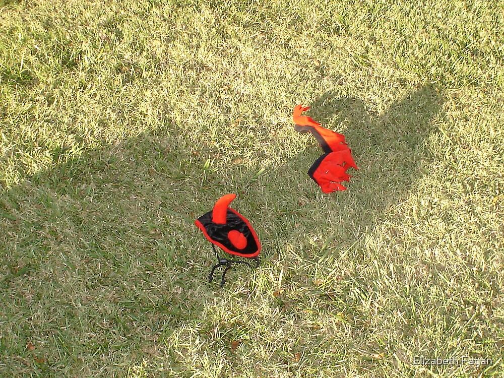 Devil Shadow on the Lawn by Elizabeth Fagan
