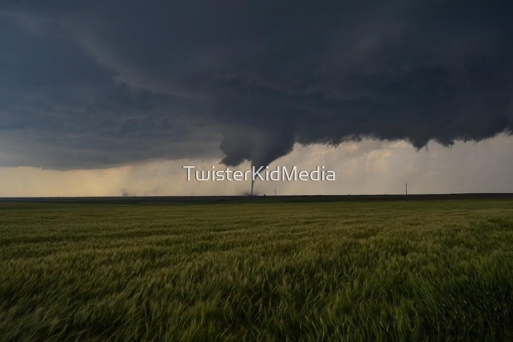 Wizzard of Oz Tornado  by TwisterKidMedia