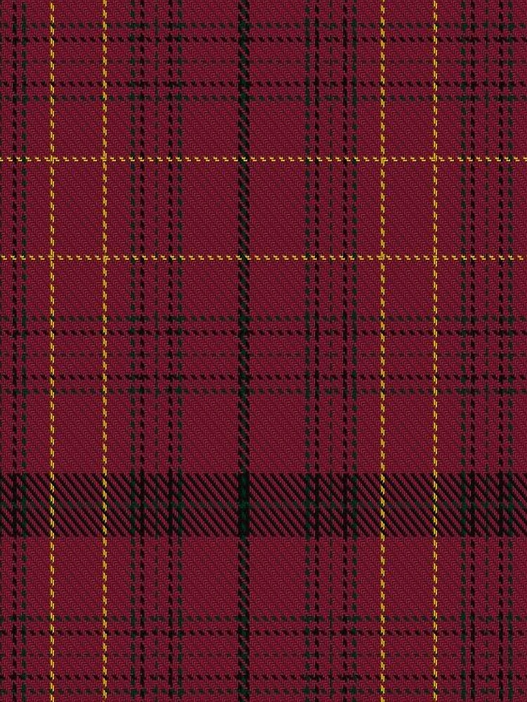 Williams of Wales Clan/Family Tartan  by Detnecs2013
