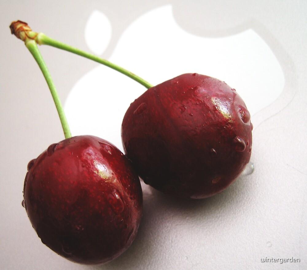 cherry apple by wintergarden