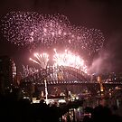 happy new year from Sydney by veins