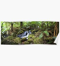 Cement Creek Pano. Poster