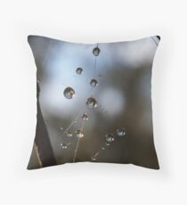 Dew on Spiders Web Throw Pillow