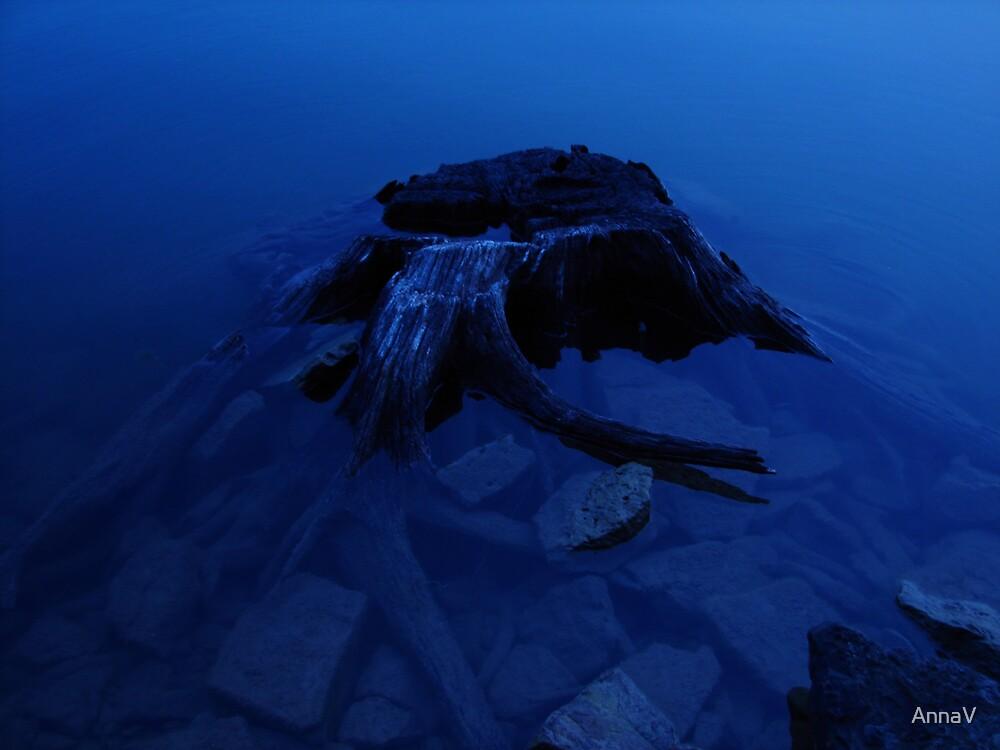 Stump by AnnaV