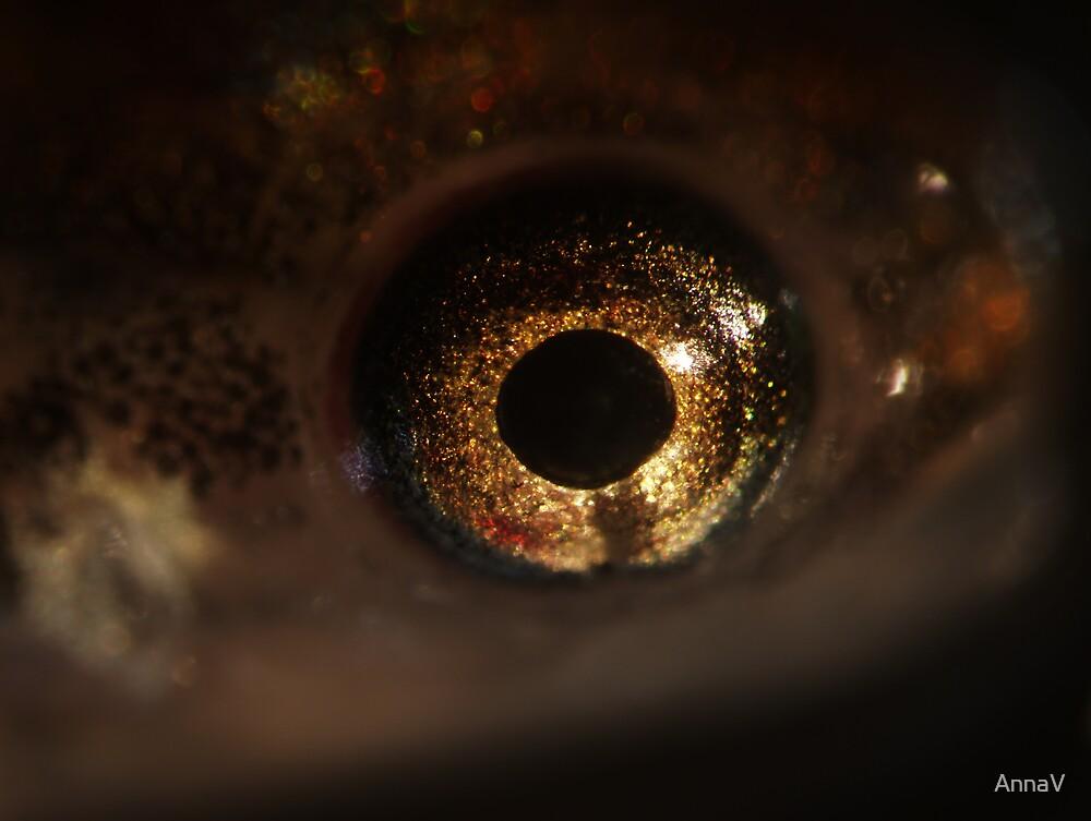 eye see you by AnnaV