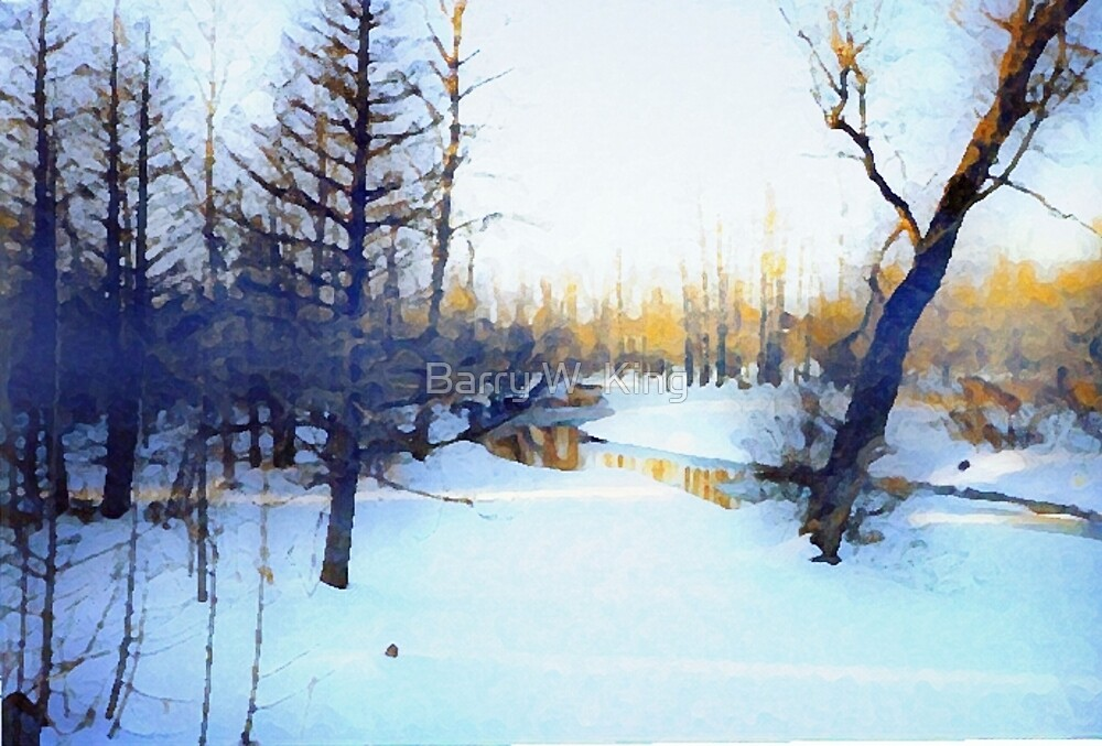 Winter Scene In North Ontario by Barry W  King