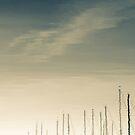 Marina by Kevin Bergen