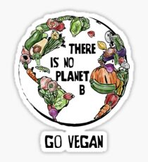 There is No Planet B - Go Vegan Sticker