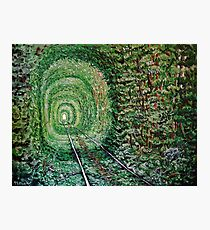 """Railway Forest"" Photographic Print"