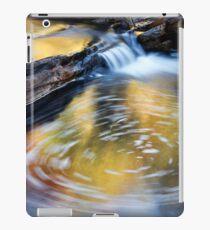 Circular Swirl - Kalamina Gorge iPad Case/Skin