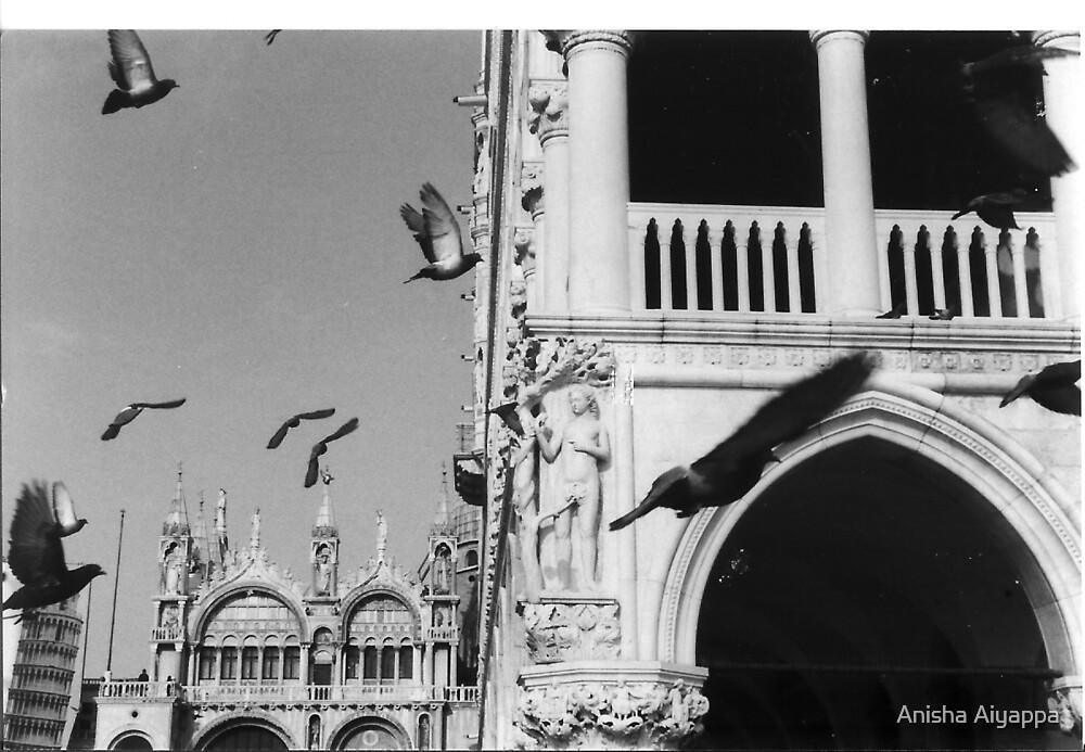 piazza by Anisha Aiyappa