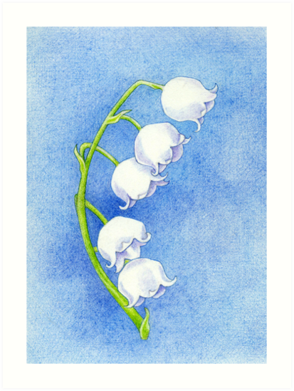 Lily of the Valley by Mariana Musa