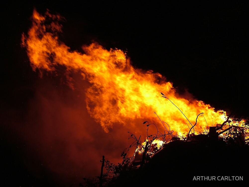 FIRE IN THE WIND by ARTHUR CARLTON