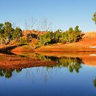 Early Morning Over an Outback Dam by Lexa Harpell