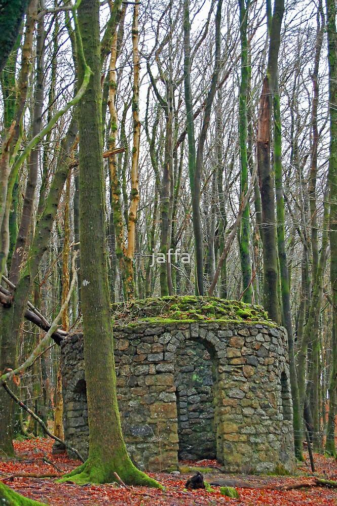 woodland winter by jaffa