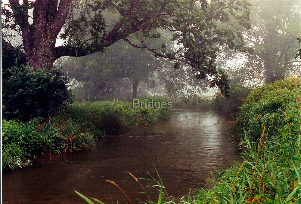Misty Morning on Monocy Creek by Bridges