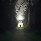 The House by Ursula Rodgers Photography