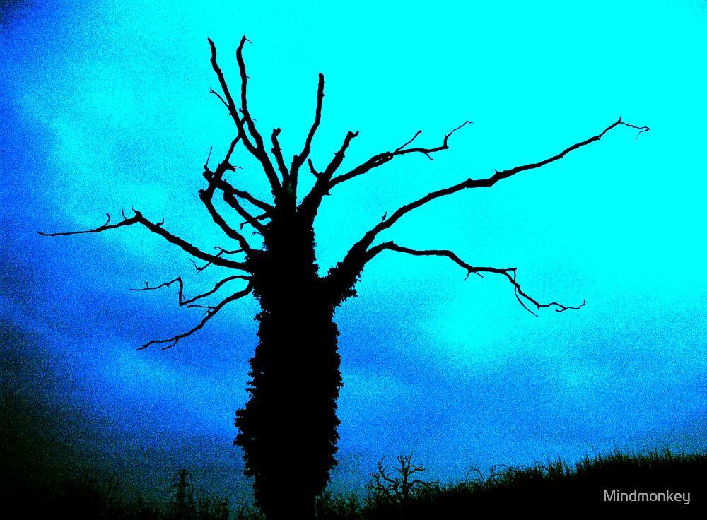 Tree by Mindmonkey