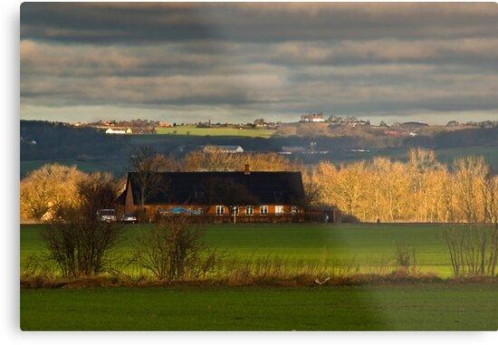 Farmland by Kofoed