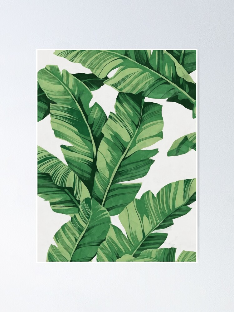 Alternate view of Tropical banana leaves Poster