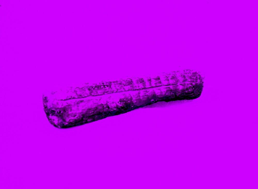 Purple Log by Hippyman