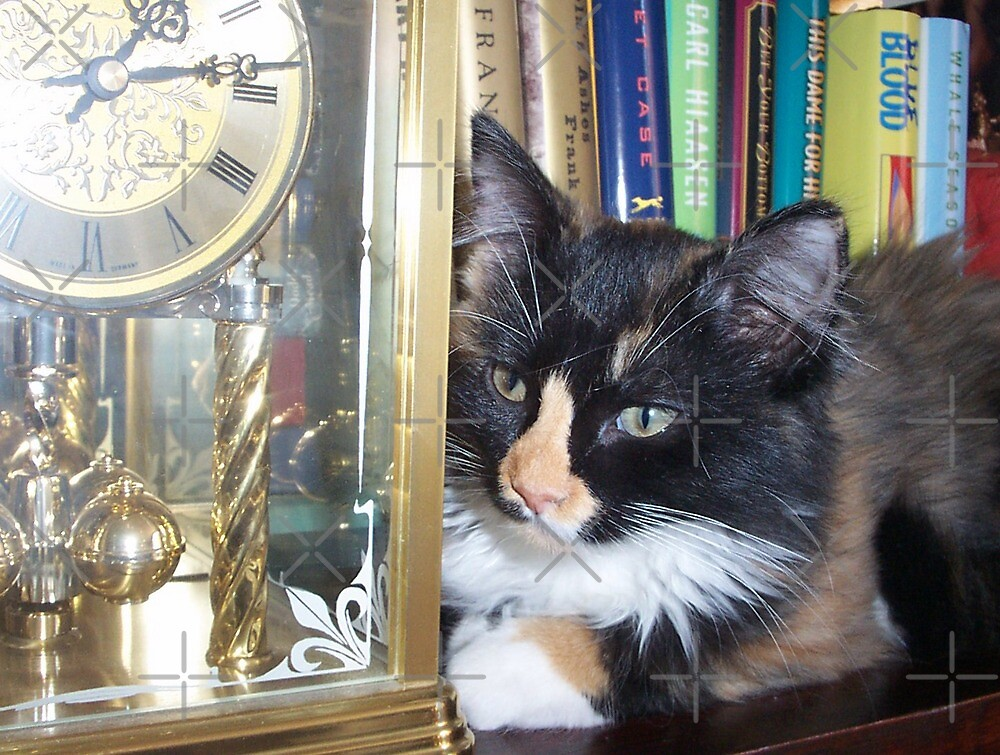 Lucy Watching Clock by Rebekah  McLeod