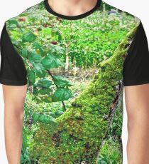 The Walled Garden, Rathmullen Hotel, Donegal, Ireland Graphic T-Shirt