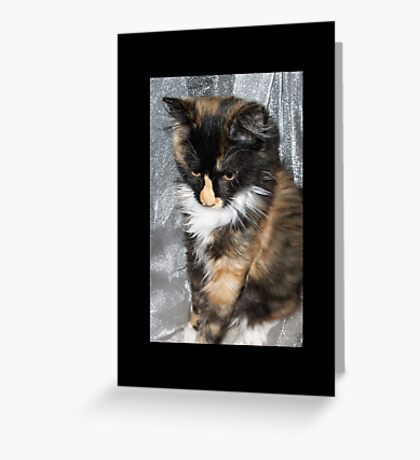Lovely Lucy Greeting Card