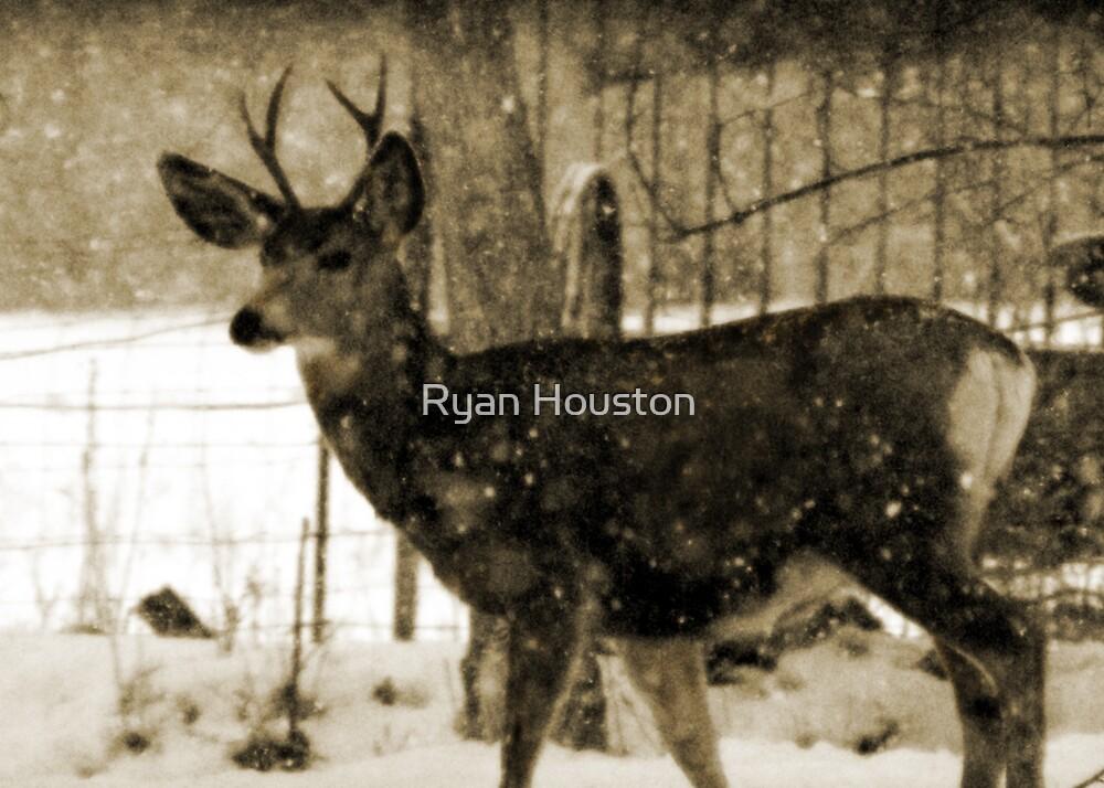 Fork-in-Horn by Ryan Houston